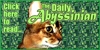 Read The Daily Abyssinian!